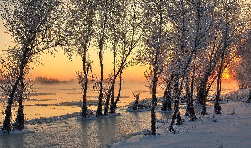 зимнее утро, рассвет, иней, деревья, река, мороз, winter morning, frost, river, morning sun, snow Фактуры зимнего рассветаphoto preview