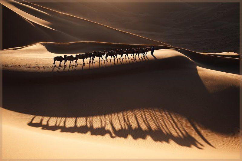 badain jaran  , china Shadowphoto preview