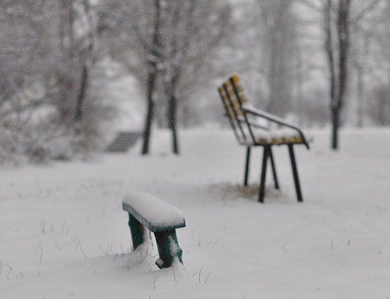Зима, Снег, Туман Философия зимы...photo preview
