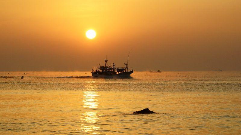 asia,south korea,korea,sunrise,fishing boat, sun, horizontal,waves,water fog, reflection,morning,new year, Sunrise on january 1, 2017photo preview
