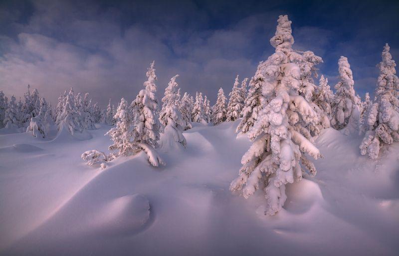 Кудесница зимаphoto preview