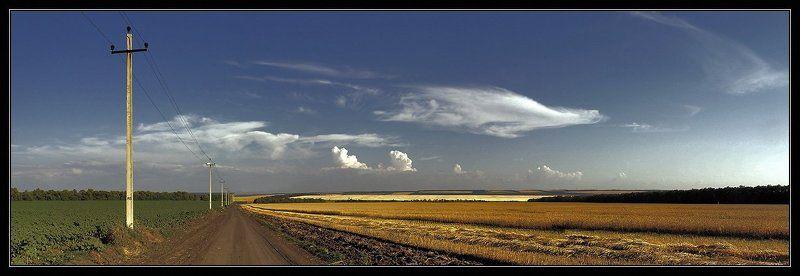 ростовская область, лето, поля Поля направо, поля налево...photo preview