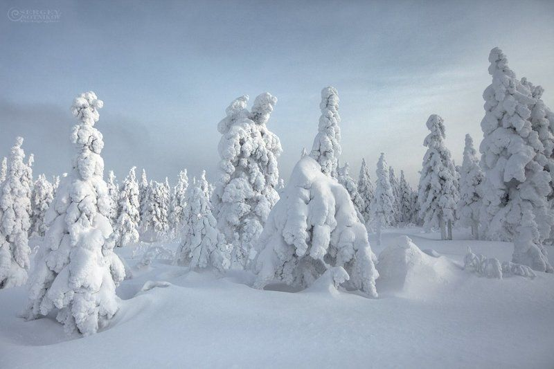 таганай зима лес урал ***photo preview
