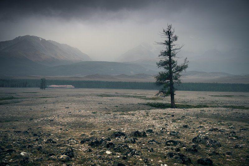 пейзаж, природа, горы, степь, долина, дерево, непогода, туман, облака, хребет, вершины, большой, высокий, красивая, алтай, сибирь Непогодаphoto preview