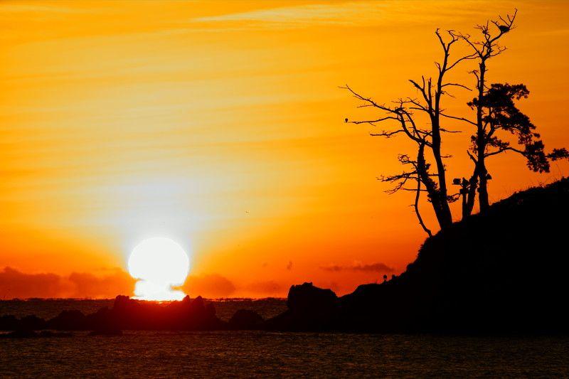 asia,korea,ulsan,sunrise,island,sea,seascape,sun,sunlight,island,rocks,horizontal,morning Sunrisephoto preview
