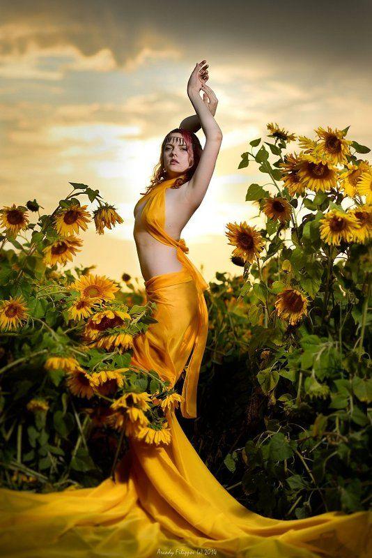Vesta in Sunflowersphoto preview