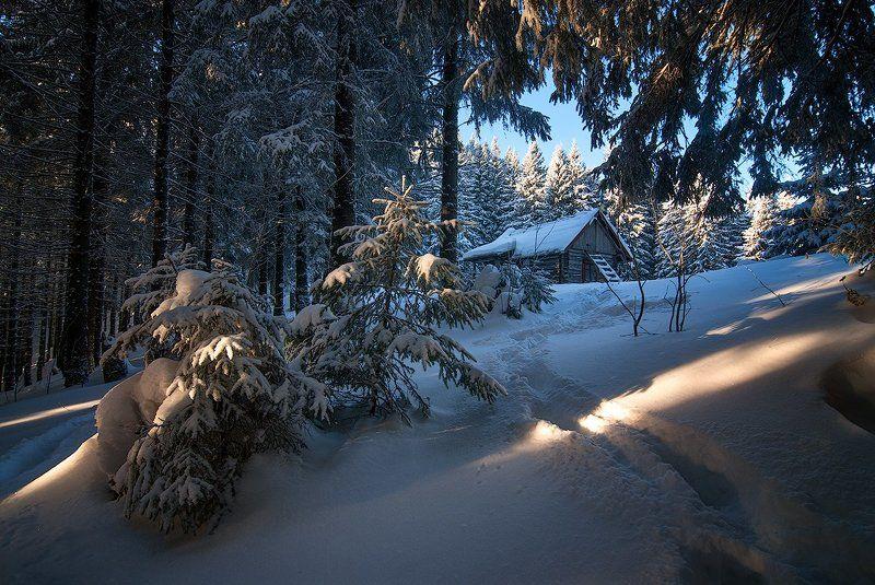 Домик в зимнем лесуphoto preview