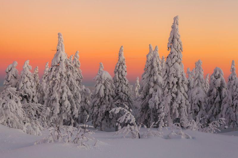 зима, рассвет, урал, таганай, златоуст, t_berg Рассветный Таганайphoto preview