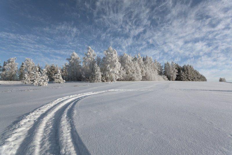 снег колея сугробы лес иней облака кружева зима мороз Зимние кружеваphoto preview