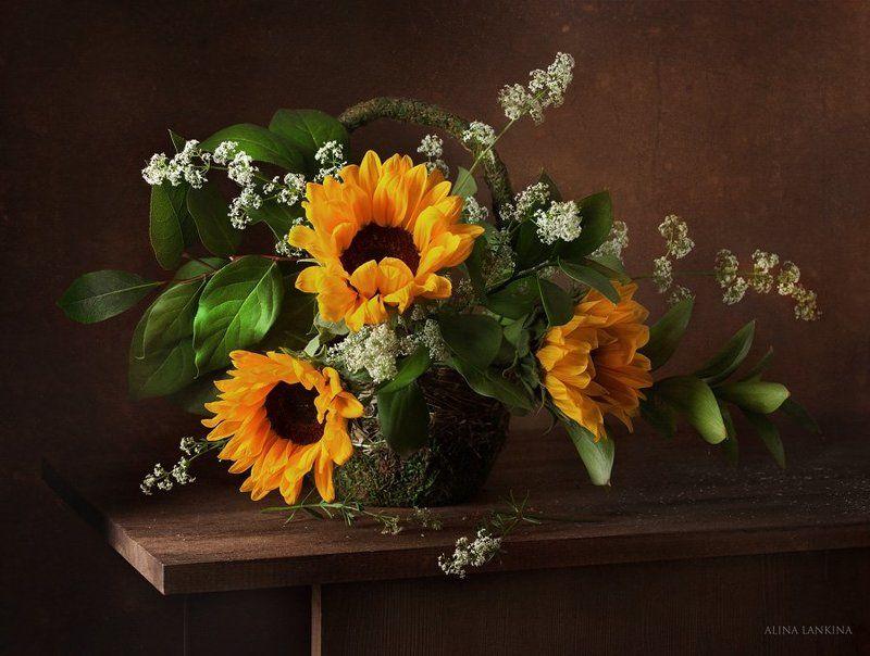 натюрморт, подсолнухи, цветы, ирисы, лето Просто этюды про летоphoto preview