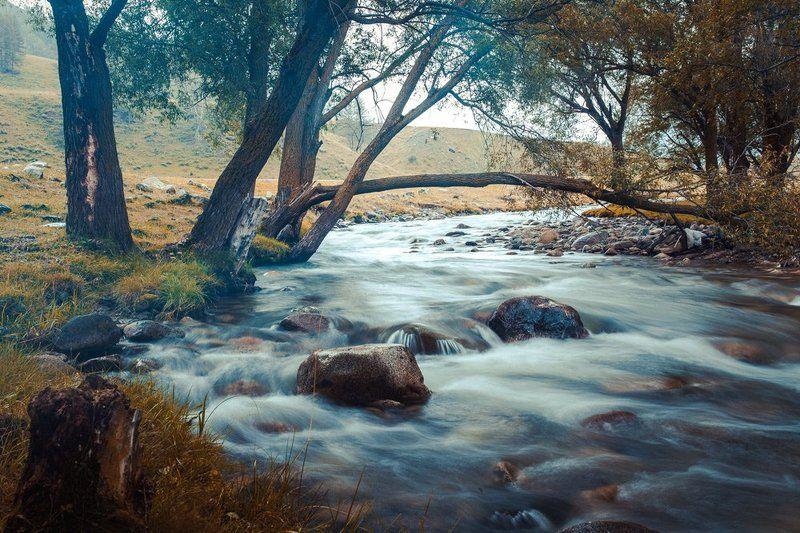 Алтайская речкаphoto preview