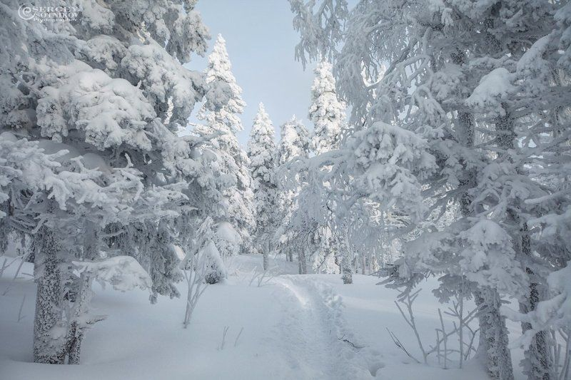 зима снег таганай урал Белые дорогиphoto preview