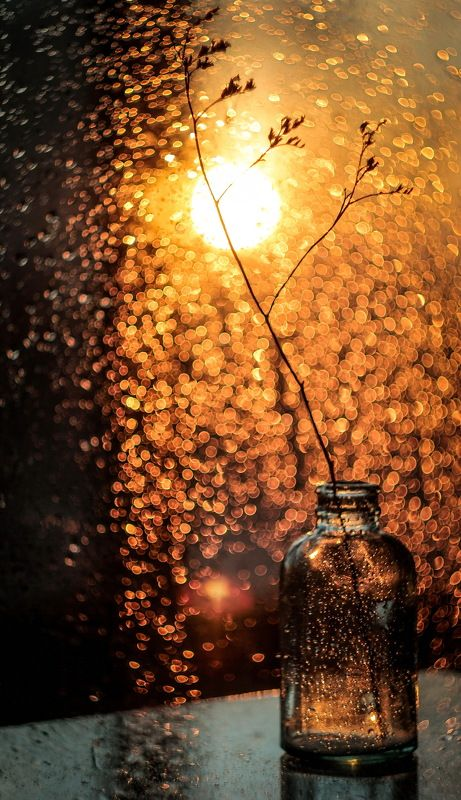 -Я вижу как закат боке оконные плавит*photo preview