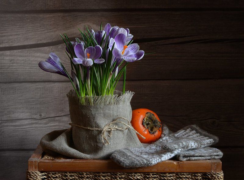 календарь, февраль, крокусы, варежки, хурма А на дворе февральphoto preview