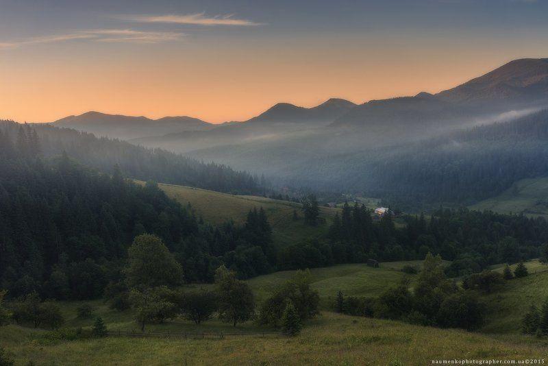 пейзаж, горы, природа, лес, небо, путешествия, красивый, лето, зеленый, украина, трава, дерево, фон, парк, естественный, луг, гора, сезон, красота, цвет, солнце, свет, свежий, карпатский, идиллический, карпаты, карпатские, синий, туризм, вид, холм, время, Карпаты. Летнее утро у села Дземброняphoto preview