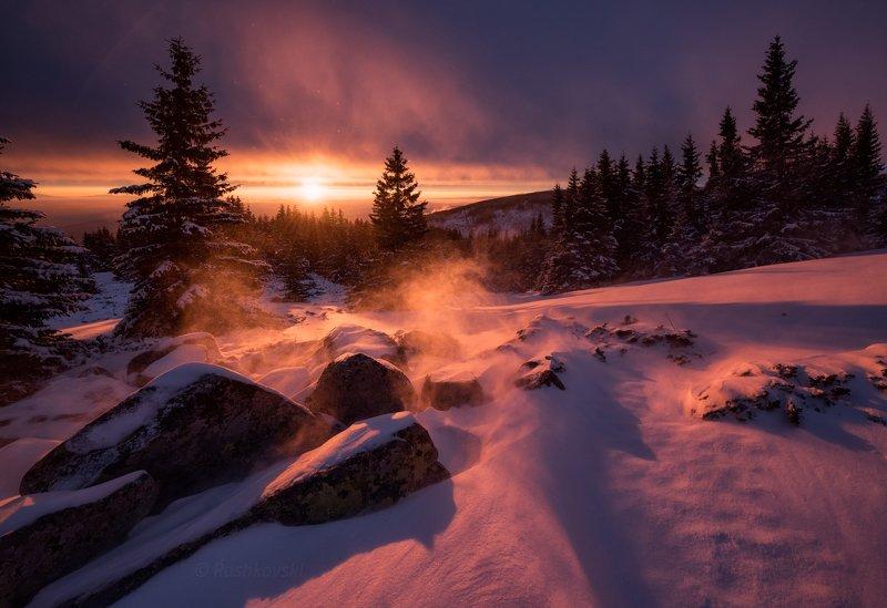 Winter fairy scenephoto preview