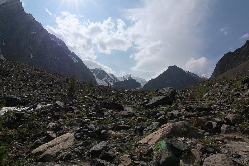 алтай, горный алтай,лето,ущелье ,актру,горы В ущелье Актру...photo preview