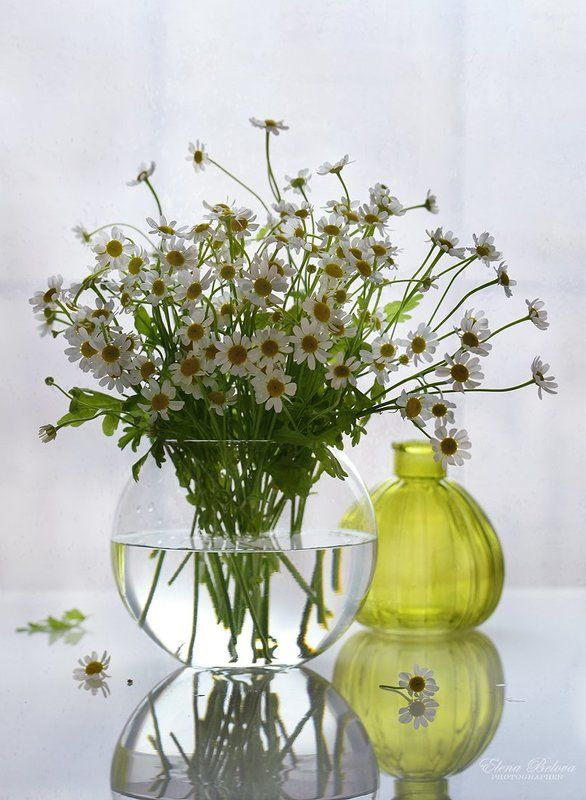 натюрморт, цветы Утро...photo preview