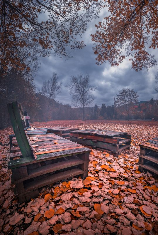 autumn, fall, landscape, trees, forest, woods, bulgaria, colors, nature, fog, mist, rain, october, sky, clouds ColorFall Dayphoto preview