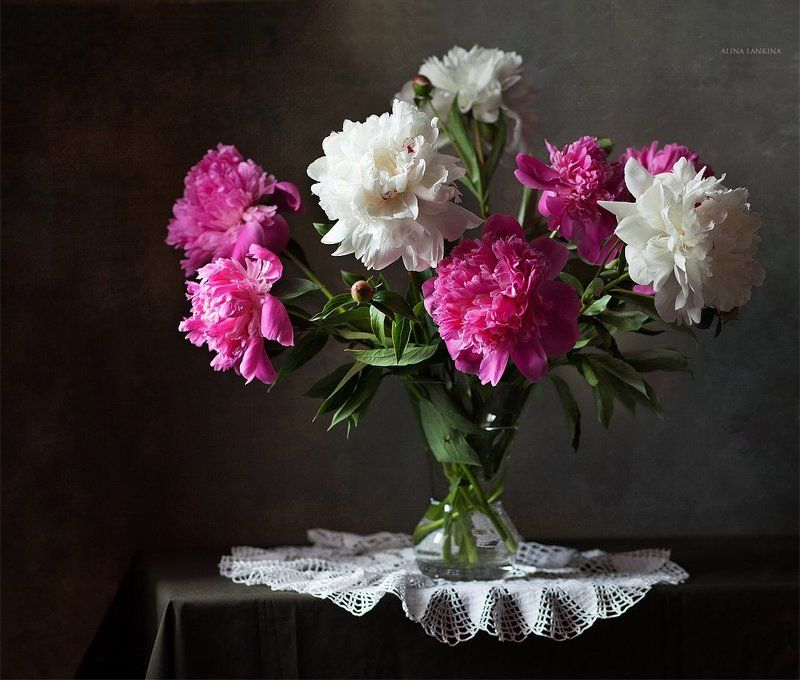 натюрморт, фотонатюрморт, свет, алина ланкина, пионы, цветы, лето Просто пионыphoto preview
