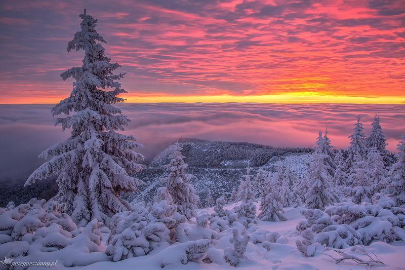 Winter Sunrisephoto preview