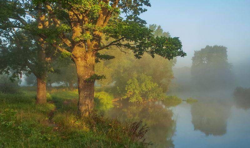 рассвет, туман Утро третьего сентябряphoto preview