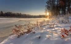 Доброе утро Забайкальская тайга