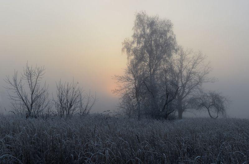 восход, утро, туман, иней Первые минутыphoto preview