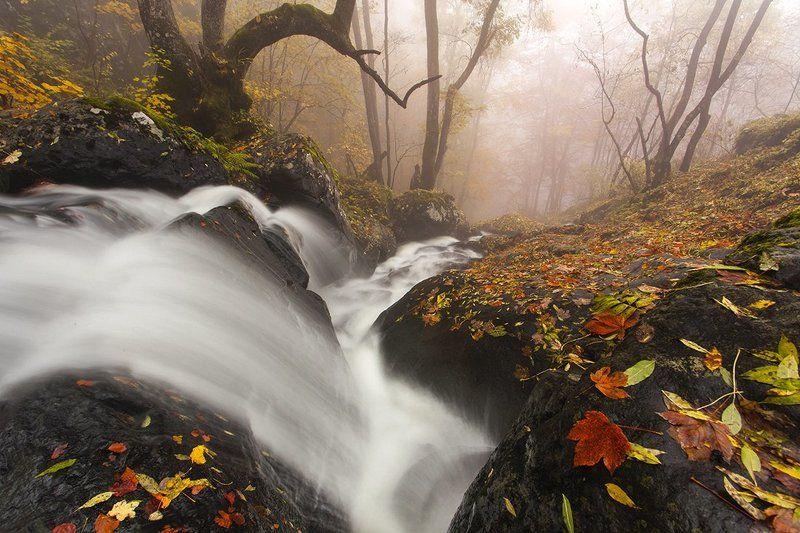 болгария, осень, река Речной Порогphoto preview