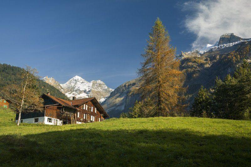 alps, switzerland Швейцарский пейзажphoto preview