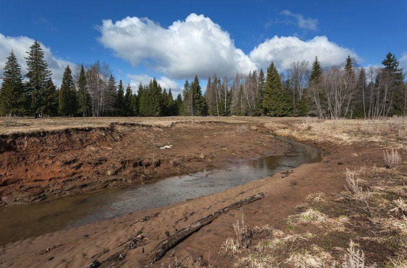 Речка весна лес облака небо Весенняя речкаphoto preview