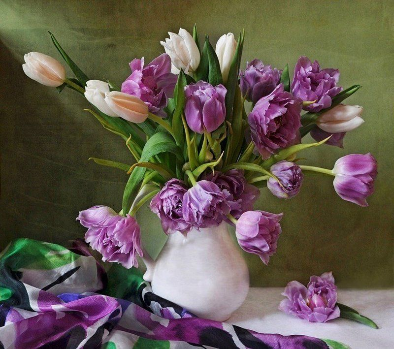 весна, тюльпаны Мартовскийphoto preview