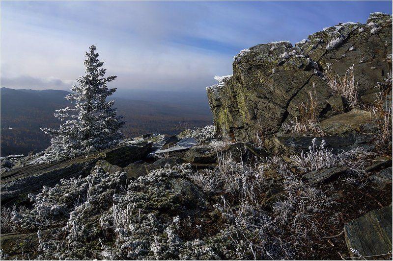 хребет,камни,ель Начало зимы на Уреньге....photo preview