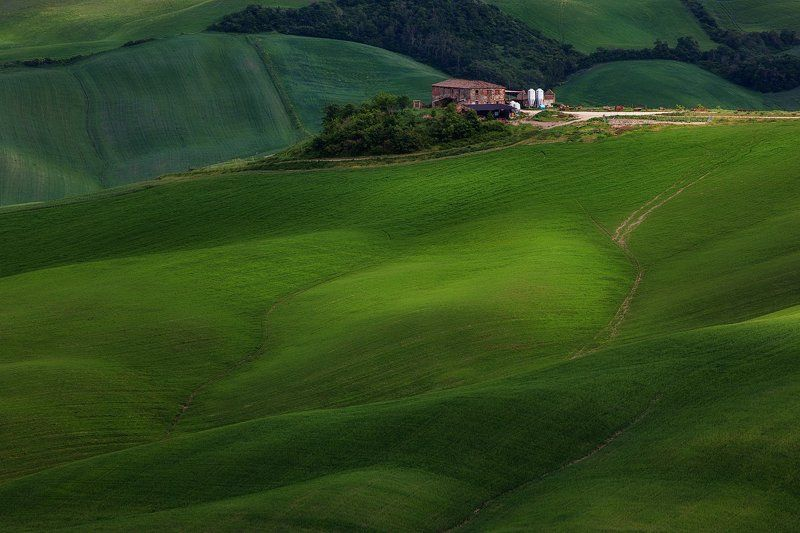 тоскана, италия, tuscany, italy Тишина Тосканы.photo preview