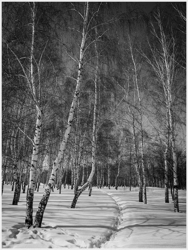 Мартовские пейзажи.photo preview