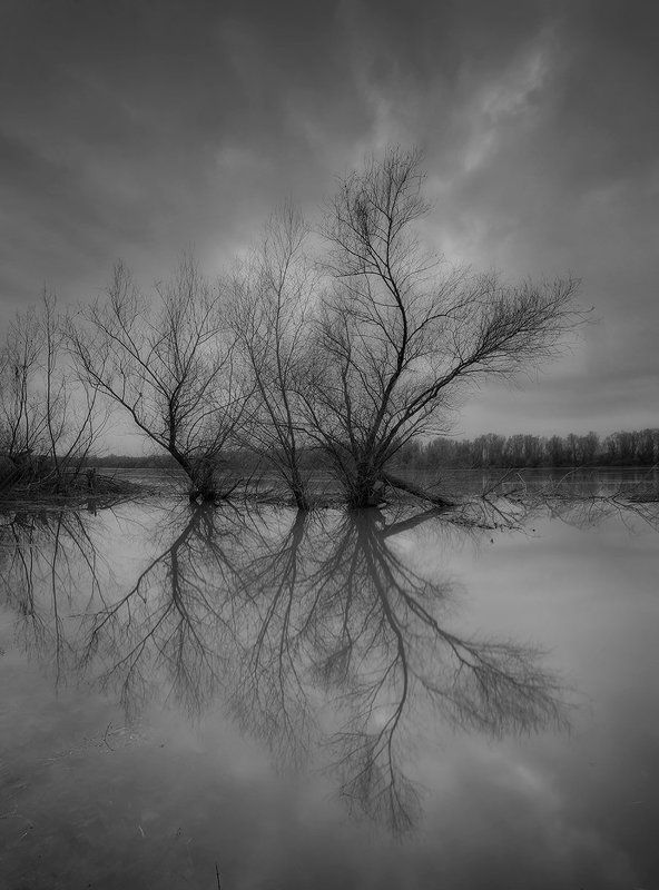 River mirrorphoto preview