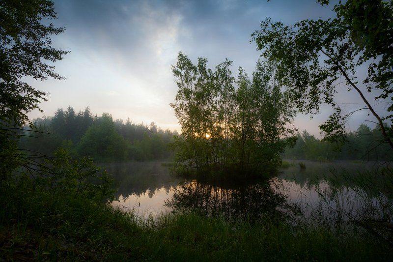 остров, утро, лето, озеро, тишина, природа, благодать Необитаемый островphoto preview