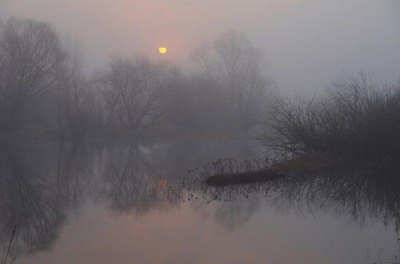 spring, belarus, sun, water, landscape, nature, morning, fog, весна, солнце, пейзаж, природа, утро, рассвет, туман Пробуждениеphoto preview