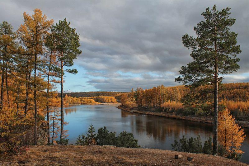 якутия, река чульман, нерюнгри, осень Про сентябрьphoto preview