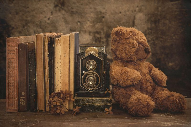 photogenic teddy bearphoto preview