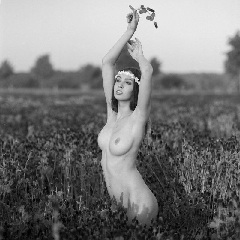 akt, nude, analog, hasselblad, ninoveron, women, fineart, flowers, bw, 6x6, Dariaphoto preview