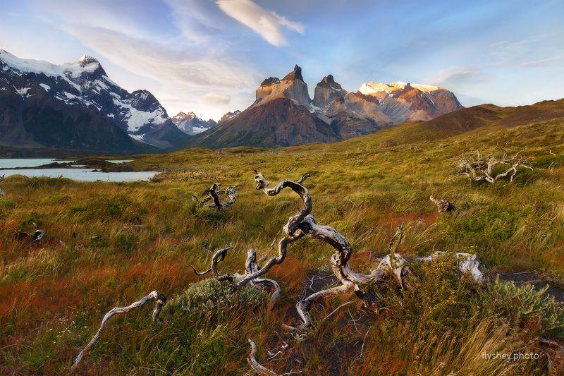 пейзаж, патагония, чили, природа, закат, горы, торрес дель пайне патагонияphoto preview