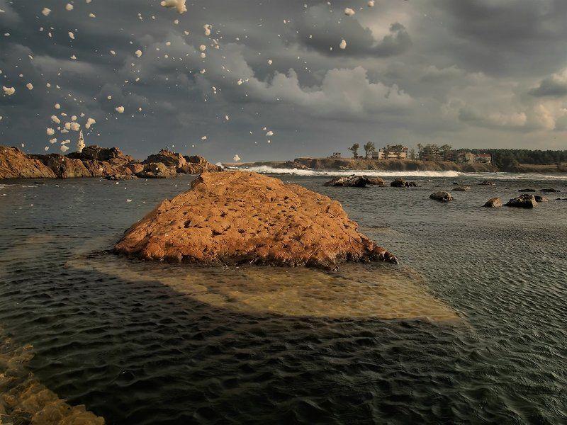 морская пенкаphoto preview