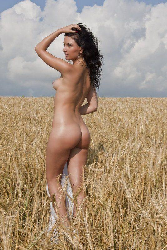 одеса, лето, урожай, пшеница, поле, девушка, ню 0516 nuphoto preview