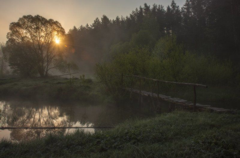 Весеннее утро...photo preview