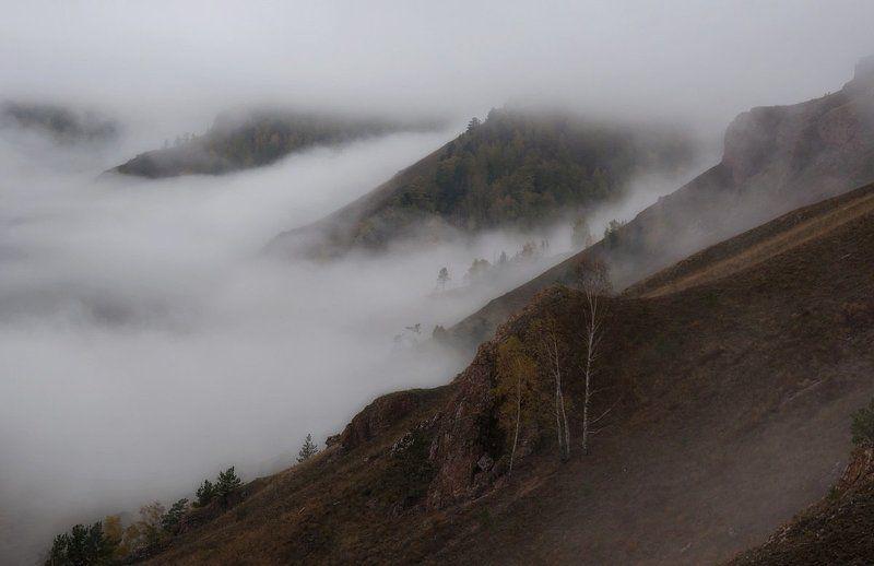 Осенние туманы .photo preview