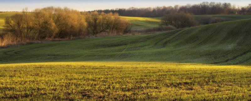 Мартовские линии...photo preview