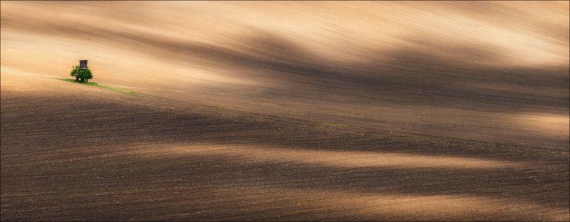 чехия, моравия, весна,czech, south moravian, формы, линии, цвет, lines, shadows, hills, Spring Texturesphoto preview