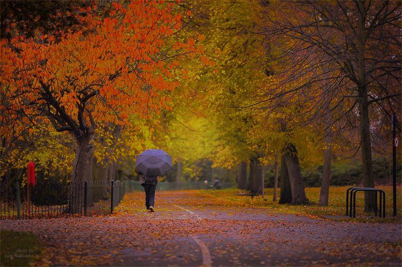 человек с зонтом..photo preview