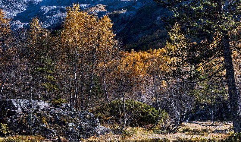 Осень в Софийской долинеphoto preview